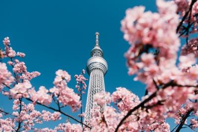 แรงบันดาลใจจากสถานทูตญี่ปุ่น สู่ THE ESSE AT SINGHA COMPLEX